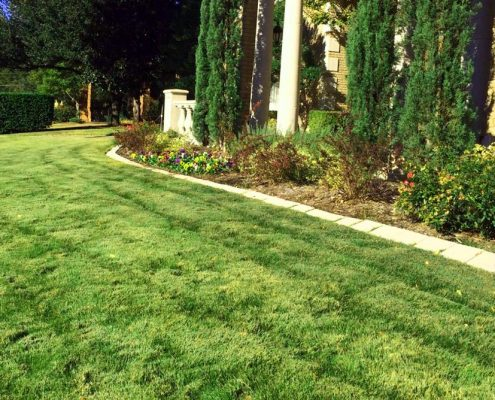 Lawn Care Services in Coppell